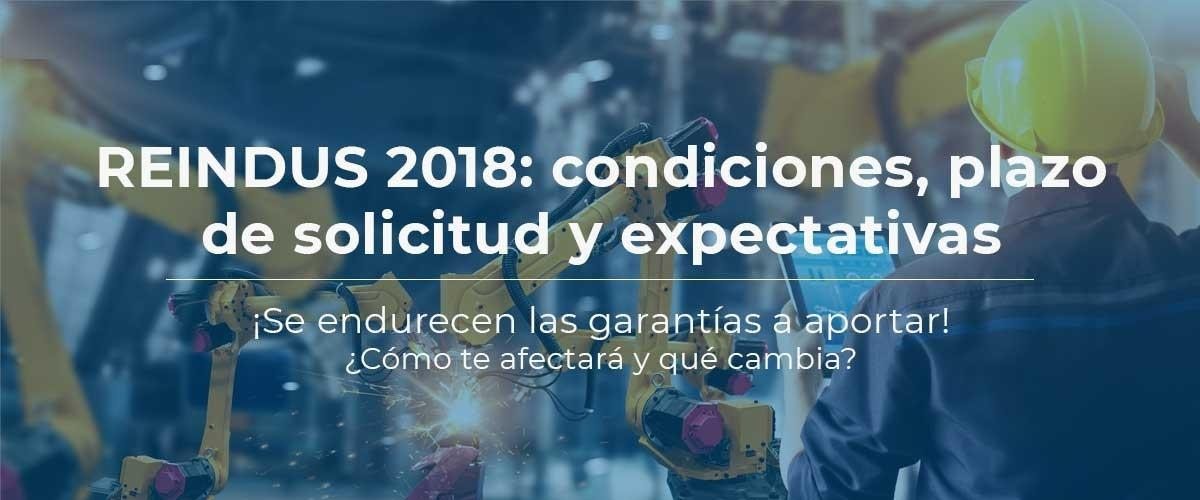 reindus-2018-plazo-condiciones-ayudas-reindustrializacion-seguro-caucion