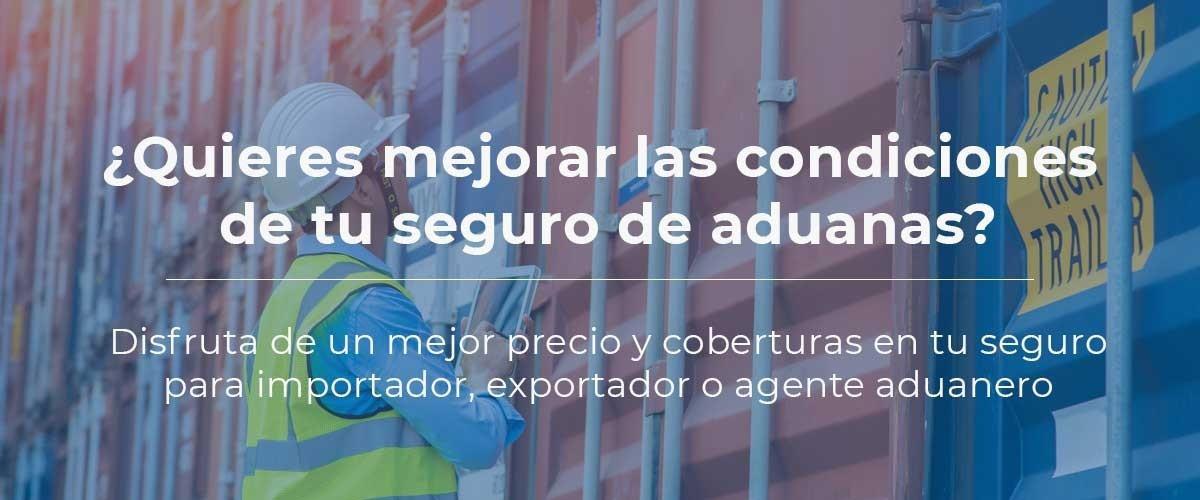 seguro-aduanas-sustituir-mejorar